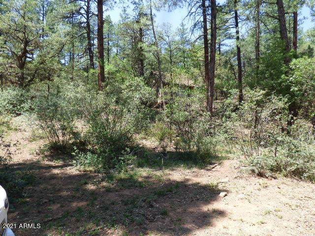 3944 N Orloff Road, Pine, AZ 85544 (MLS #6274256) :: The Property Partners at eXp Realty