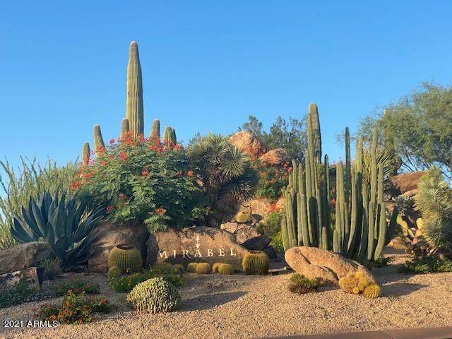 36325 N 105th Place, Scottsdale, AZ 85262 (MLS #6283391) :: ASAP Realty