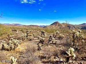 000x S Everett Bowman Road, Wickenburg, AZ 85390 (MLS #6283813) :: Keller Williams Realty Phoenix