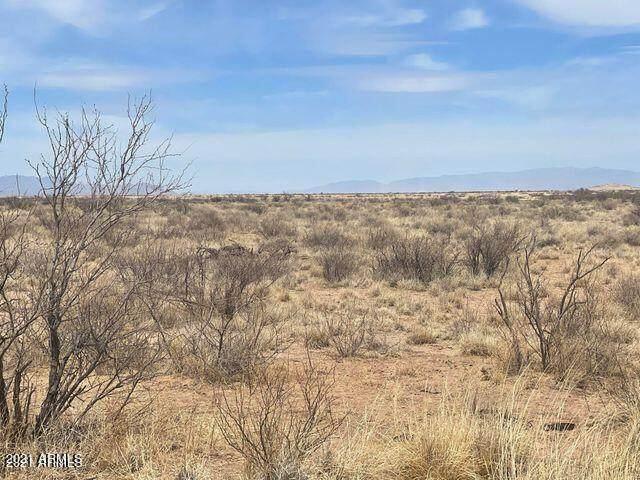 6 Lots in La Playa Estates, Cochise, AZ 85606 (MLS #6284586) :: Elite Home Advisors