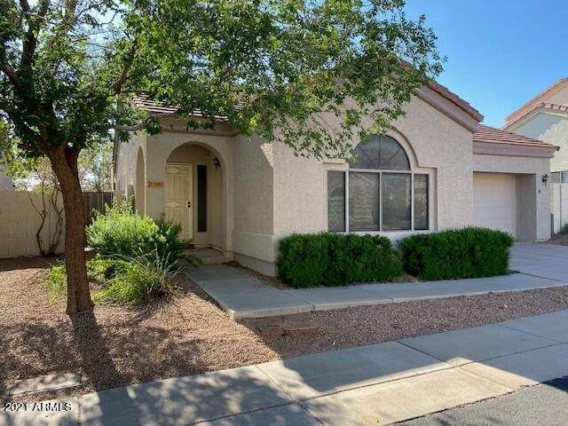 1148 N 87TH Place, Mesa, AZ 85207 (MLS #6284649) :: The Copa Team | The Maricopa Real Estate Company