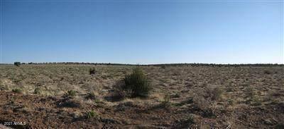 10990 W Bright Sky Trail, Williams, AZ 86046 (MLS #6289849) :: Executive Realty Advisors