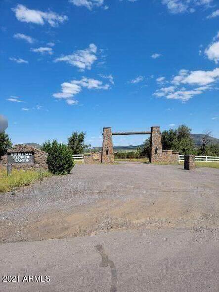 7923 Daisy Drive, Williams, AZ 86046 (MLS #6291294) :: The Copa Team | The Maricopa Real Estate Company