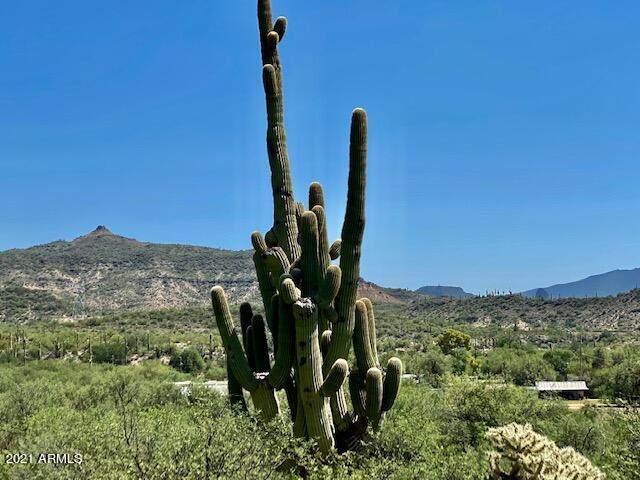 32601 S Lisa Drive, Black Canyon City, AZ 85324 (MLS #6291817) :: The Daniel Montez Real Estate Group