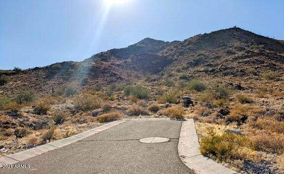 21542 W Black Rock Drive, Buckeye, AZ 85396 (MLS #6292492) :: Yost Realty Group at RE/MAX Casa Grande