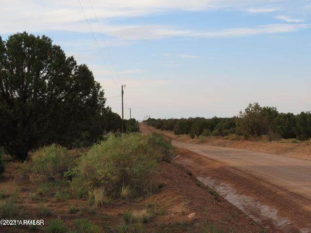 4365 E Pinto Road, Snowflake, AZ 85937 (MLS #6292531) :: Keller Williams Realty Phoenix
