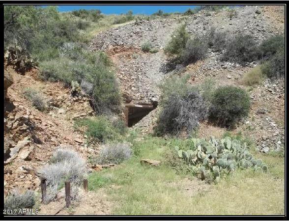 000 N Trilby Mine, Morristown, AZ 85342 (MLS #6295485) :: The Copa Team | The Maricopa Real Estate Company
