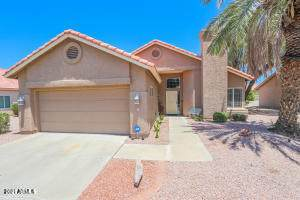 10226 E Hercules Drive, Sun Lakes, AZ 85248 (MLS #6295564) :: Arizona Home Group