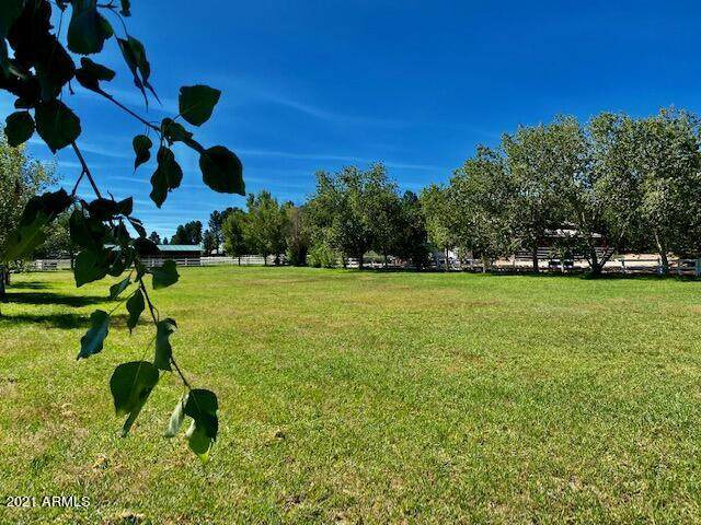 2301 Quarter Horse Trail, Overgaard, AZ 85933 (MLS #6296721) :: Yost Realty Group at RE/MAX Casa Grande