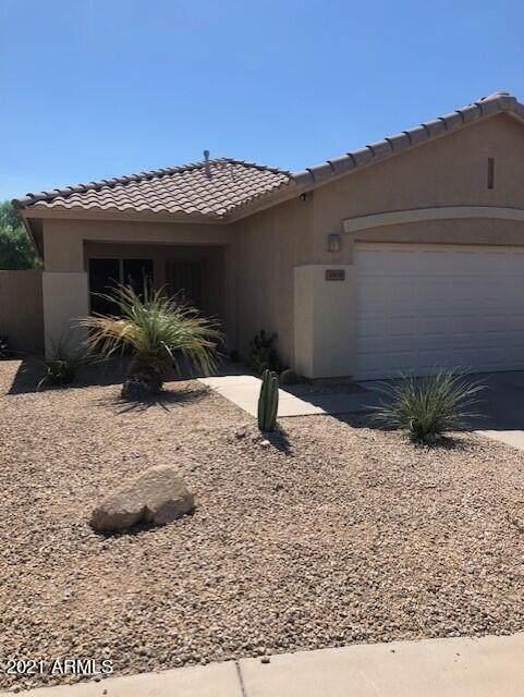 3909 W Hackamore Drive, Phoenix, AZ 85083 (MLS #6296988) :: The Dobbins Team