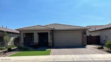 873 W Sisso Tree Avenue, San Tan Valley, AZ 85140 (MLS #6297396) :: TIBBS Realty