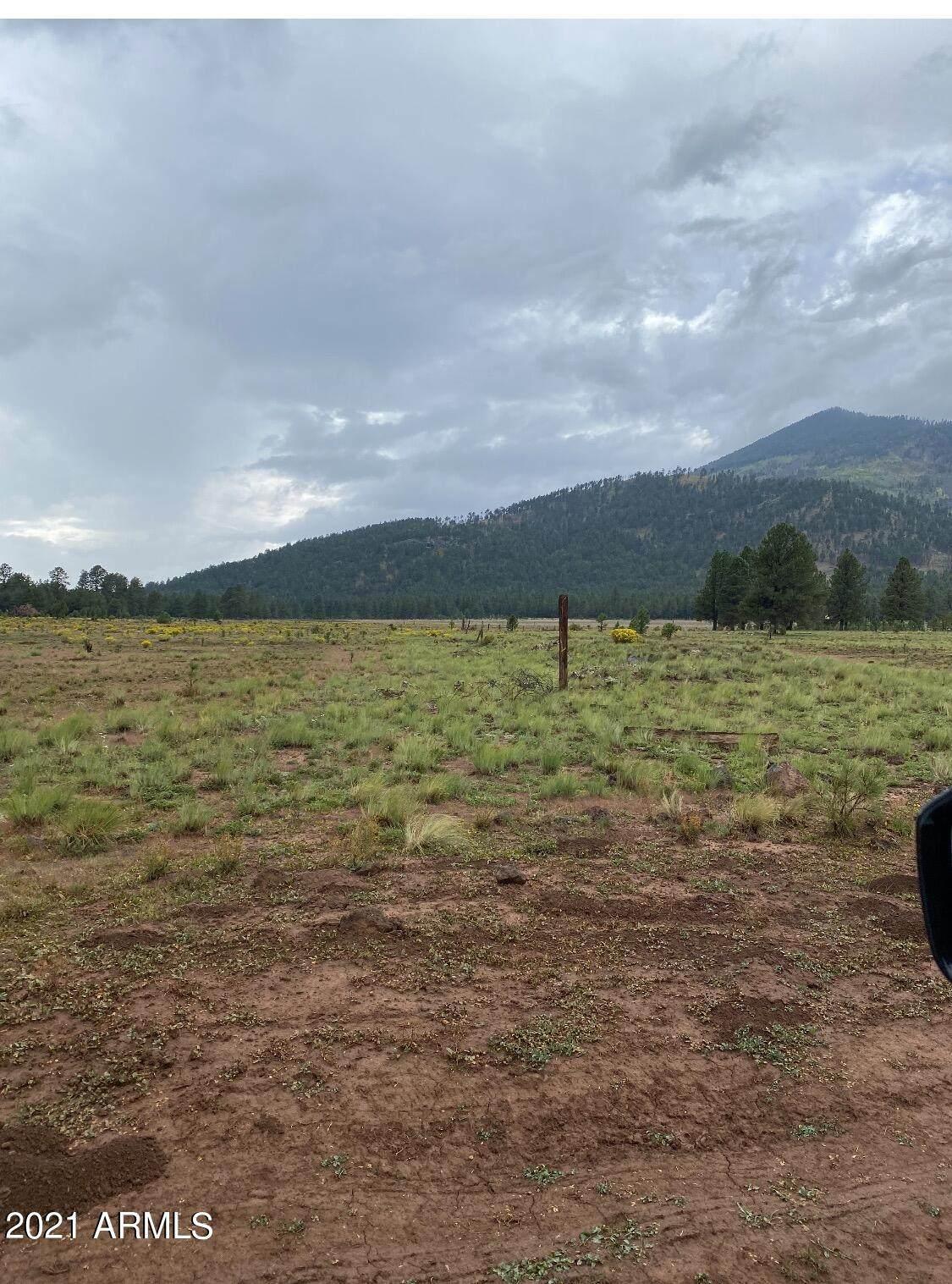 17404 Crowley Trail - Photo 1