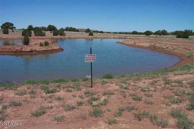 Sec 27-28 Cottonwood Wash Extates, Snowflake, AZ 85937 (MLS #6298584) :: Keller Williams Realty Phoenix