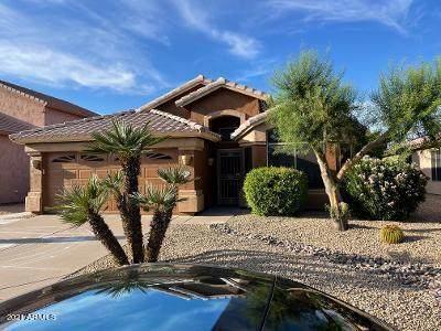 9658 E Palm Ridge Drive, Scottsdale, AZ 85260 (#6299687) :: AZ Power Team