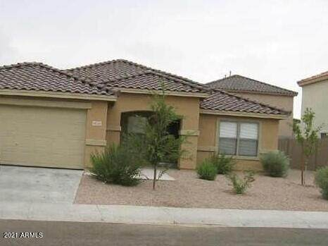 9136 E Plata Avenue, Mesa, AZ 85212 (MLS #6301565) :: Yost Realty Group at RE/MAX Casa Grande