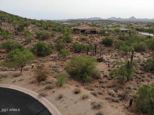 2429 W Restin Road, Phoenix, AZ 85086 (MLS #6305306) :: Klaus Team Real Estate Solutions