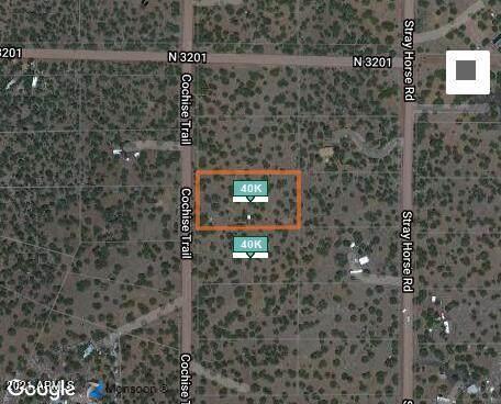 28 County Road 3198, Vernon, AZ 85940 (MLS #6305543) :: The Daniel Montez Real Estate Group