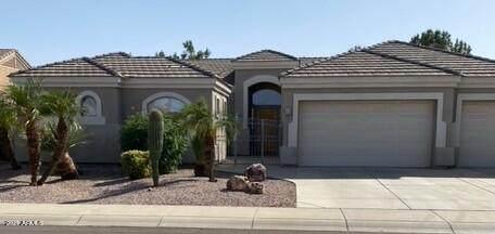 3449 E Cody Avenue, Gilbert, AZ 85234 (MLS #6306580) :: D & R Realty LLC