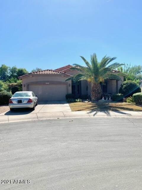 4591 E Sycamore Court, Gilbert, AZ 85298 (MLS #6307596) :: The Copa Team | The Maricopa Real Estate Company