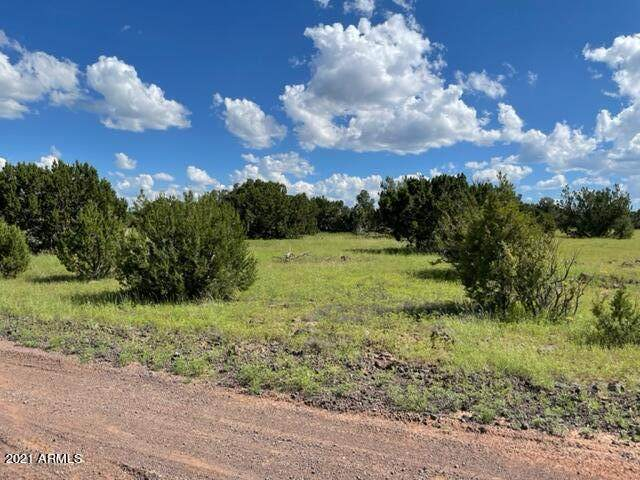80 County Road 8113, Concho, AZ 85924 (MLS #6308124) :: Dave Fernandez Team | HomeSmart