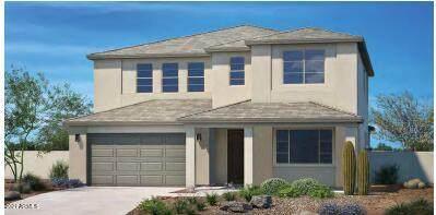 5951 N 189TH Drive, Litchfield Park, AZ 85340 (MLS #6309363) :: The Daniel Montez Real Estate Group