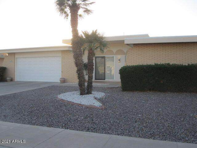 9217 W Briarwood Circle N, Sun City, AZ 85351 (MLS #6309509) :: The Garcia Group