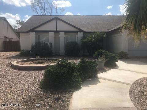 1521 W Citation Lane, Chandler, AZ 85224 (MLS #6309889) :: Conway Real Estate