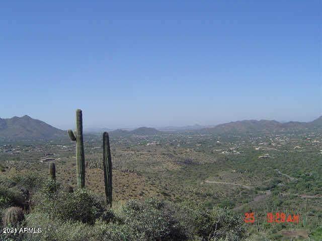 42231 N Fleming Springs Road, Cave Creek, AZ 85331 (MLS #6311106) :: Elite Home Advisors