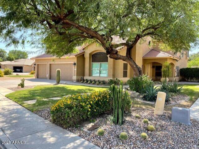 3110 S Coyote Canyon Circle, Mesa, AZ 85212 (MLS #6311504) :: Morton Team | A.Z. & Associates