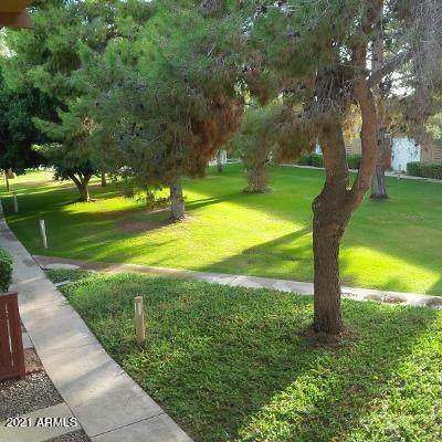 6125 E Indian School Road #280, Scottsdale, AZ 85251 (MLS #6313325) :: The Ethridge Team