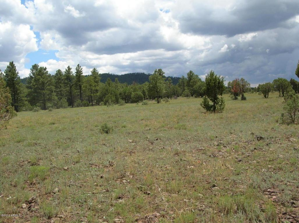 Lot #3 Porter Mountain Road - Photo 1