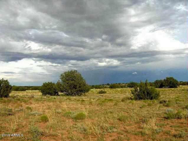 Lot 650 Chevelon Canyon Ranch, Overgaard, AZ 85933 (MLS #5516022) :: The Ellens Team