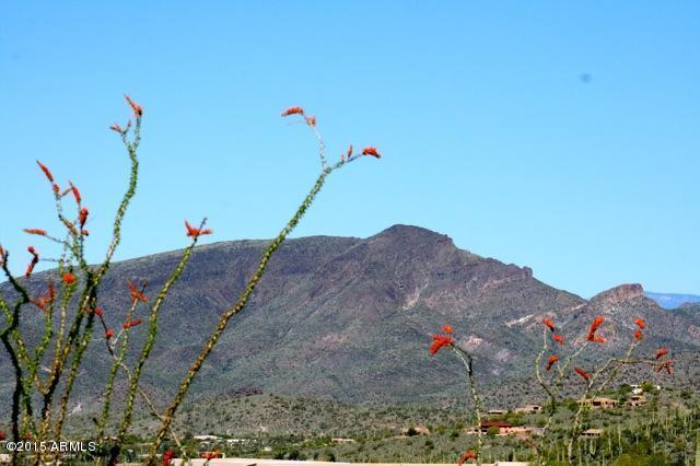 39783 N Ocotillo Ridge Drive, Carefree, AZ 85377 (MLS #5559015) :: The Garcia Group