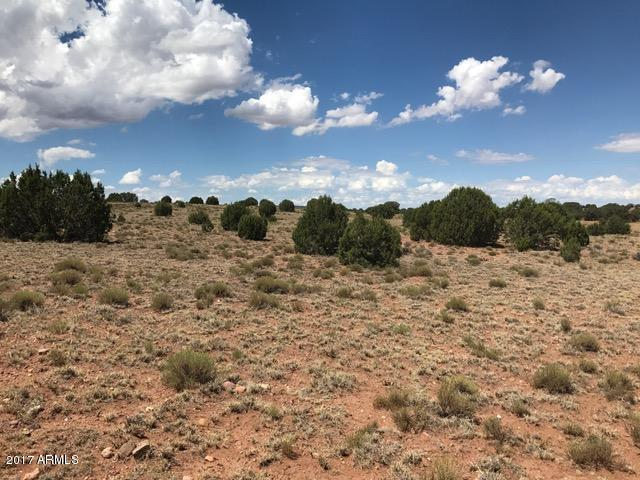 Ranch of The White Mountains Lot 33, Concho, AZ 85924 (MLS #5612483) :: Yost Realty Group at RE/MAX Casa Grande