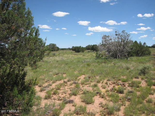 Sec 19 T15n,R16e: Sw4,Nw4 - Cr, Heber, AZ 85928 (MLS #5630149) :: The W Group