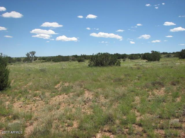 Sec 19 T15n,R16e: Nw4,Nw4 - Cr, Heber, AZ 85928 (MLS #5630154) :: Devor Real Estate Associates