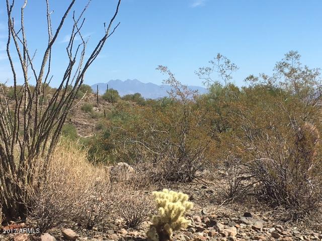 15420 N Cabrillo Drive, Fountain Hills, AZ 85268 (MLS #5668189) :: Occasio Realty