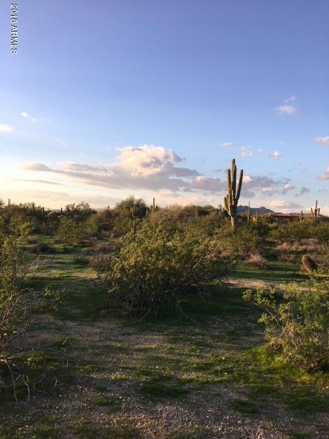 29496 N 76TH Street, Scottsdale, AZ 85266 (MLS #5684646) :: Brett Tanner Home Selling Team