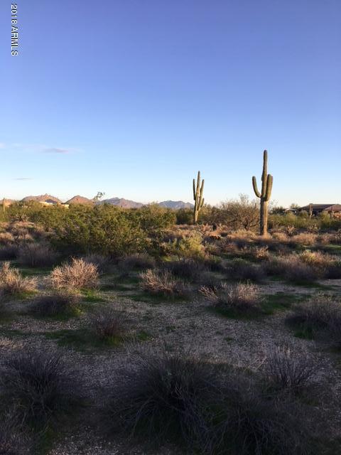 29430 N 76TH Street, Scottsdale, AZ 85266 (MLS #5697567) :: Riddle Realty Group - Keller Williams Arizona Realty