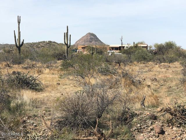 47219 N 9TH Avenue, New River, AZ 85087 (MLS #5739565) :: Riddle Realty