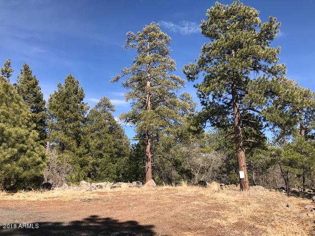 17565 S Bedrock Boulevard, Munds Park, AZ 86017 (MLS #5741490) :: My Home Group