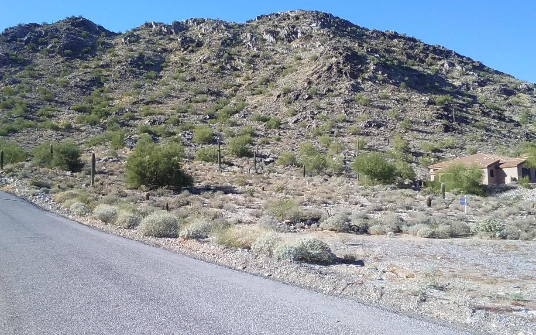 0 Chuckwalla Trail - Photo 1