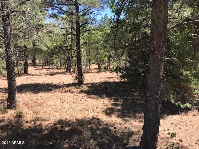 3081 W Falling Leaf Road, Show Low, AZ 85901 (MLS #5764966) :: My Home Group