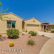 42562 W Sea Eagle Drive, Maricopa, AZ 85138 (MLS #5810764) :: The Bill and Cindy Flowers Team
