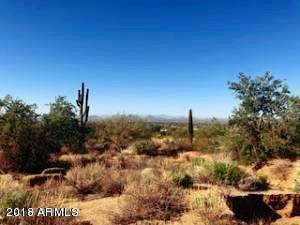 26809 N 95TH Street, Scottsdale, AZ 85262 (MLS #5820843) :: Brett Tanner Home Selling Team