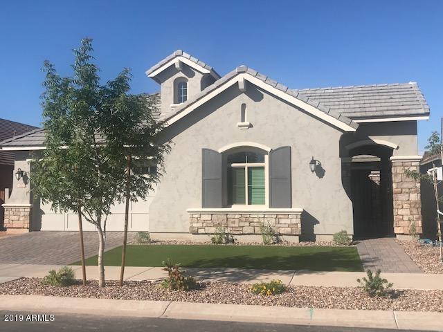 4328 E Dwayne Street, Gilbert, AZ 85295 (MLS #5912825) :: Power Realty Group Model Home Center