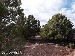 Lot 140 Show Low Pines Unit 9 - Photo 1
