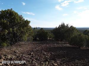 Lot 236 Show Low Pines Unit 3 - Photo 1