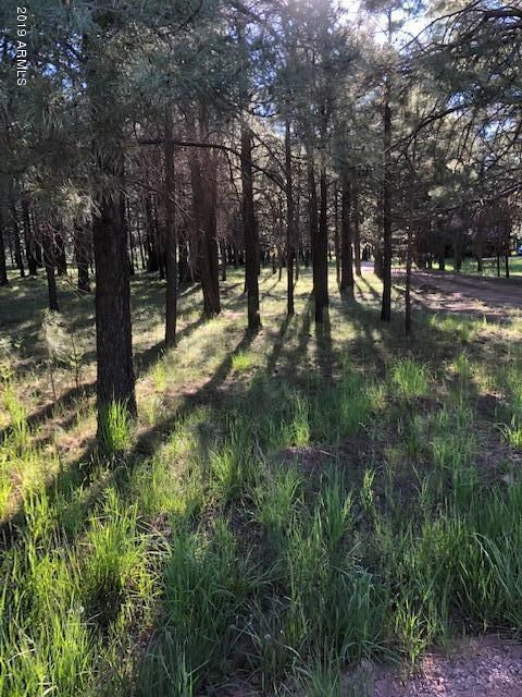 1322 Sheep Springs Road, Forest Lakes, AZ 85931 (MLS #5933180) :: The W Group