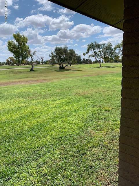 18455 N Conestoga Drive, Sun City, AZ 85373 (MLS #5969621) :: The W Group